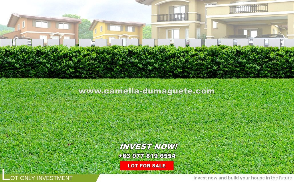 Lot House for Sale in Dumaguete